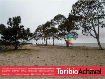 https://www.gallito.com.uy/colonia-cosmopolita-5-has-costa-de-rio-inmuebles-14096142