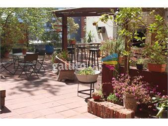 https://www.gallito.com.uy/amplisima-terraza-de-118m2-con-parrillero-inmuebles-14467881