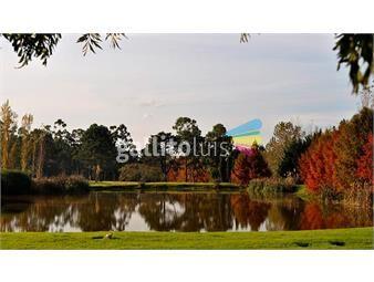 https://www.gallito.com.uy/parcela-en-cementerio-parque-del-reencuentro-ruta-5-inmuebles-14582690