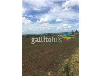 https://www.gallito.com.uy/57-ha-a-8-km-de-migues-sobre-ruta-108-50-financiado-inmuebles-15472719