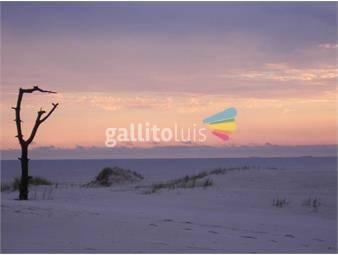 https://www.gallito.com.uy/el-pinar-sur-terreno-de-1800m2-en-1ra-linea-cvista-al-mar-inmuebles-14637975