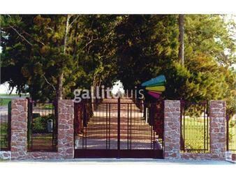 https://www.gallito.com.uy/parcela-parque-martinelli-inmuebles-13031916