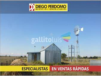 https://www.gallito.com.uy/campo-de-54-has-en-venta-san-jose-inmuebles-14859142