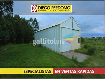 https://www.gallito.com.uy/campo-forestal-de-117-has-en-venta-san-jose-inmuebles-14859426