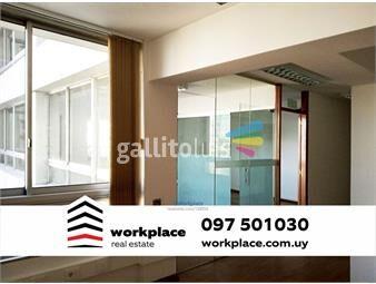 https://www.gallito.com.uy/oficina-plaza-independencia-ciudad-vieja-alquiler-inmuebles-16221365