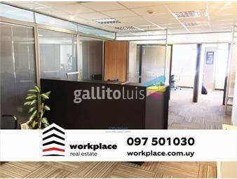 https://www.gallito.com.uy/oficina-alquiler-world-trade-center-wtc-pocitos-inmuebles-16293555