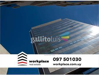 https://www.gallito.com.uy/oficina-ciudad-vieja-plaza-independencia-alquiler-inmuebles-15330928