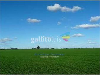 https://www.gallito.com.uy/establecimiento-agricola-ganadero-inmuebles-16331375