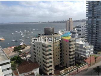 https://www.gallito.com.uy/excelente-vista-en-piso-10-con-balcon-terraza-zona-puerto-inmuebles-16963006
