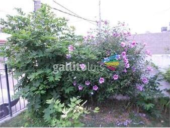https://www.gallito.com.uy/la-casa-de-raquel-habitacion-privada-individual-inmuebles-18724689