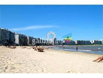 https://www.gallito.com.uy/venta-apartamento-1-dormitorio-con-terraza-al-frente-inmuebles-15023389