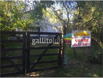 https://www.gallito.com.uy/en-excelente-zona-sobre-avenida-el-pinar-sur-inmuebles-15041219
