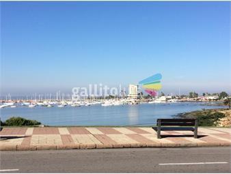 https://www.gallito.com.uy/impecable-monoambiente-en-puerto-de-buceo-inmuebles-18153079
