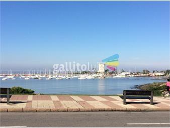 https://www.gallito.com.uy/impecable-monoambiente-en-puerto-de-buceo-inmuebles-19197457
