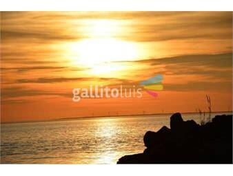 https://www.gallito.com.uy/chacra-maritima-inmuebles-15220996