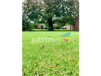 https://www.gallito.com.uy/chalet-toda-una-planta-gran-parque-inmuebles-15224188