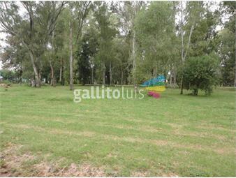 https://www.gallito.com.uy/excelente-terreno-en-barrio-residencial-a-metros-de-la-playa-inmuebles-15224627