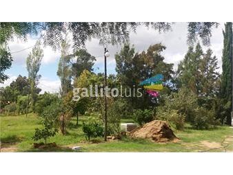https://www.gallito.com.uy/chacra-a-3-km-de-salinas-por-ruta-87-inmuebles-15233048
