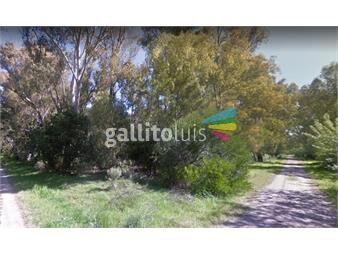 https://www.gallito.com.uy/muy-buen-terreno-arbolado-y-en-esquina-inmuebles-15237023