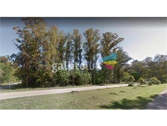 https://www.gallito.com.uy/muy-buen-terreno-arbolado-sobre-principal-avenida-asfaltada-inmuebles-15237055