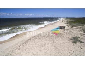 https://www.gallito.com.uy/excelente-oportunidad-3-terrenos-linderos-en-la-pedrera-inmuebles-15239175