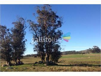 https://www.gallito.com.uy/vendo-campo-financiado-en-la-coronilla-valles-de-aigua-inmuebles-15257151