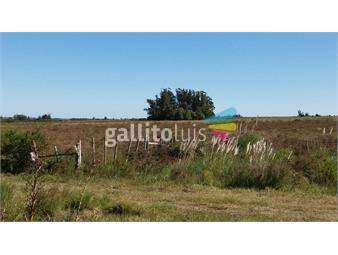 https://www.gallito.com.uy/campo-de-20-has-inmuebles-15266054