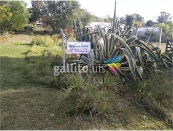 https://www.gallito.com.uy/excelente-terreno-en-balneario-los-titanes-inmuebles-15584564