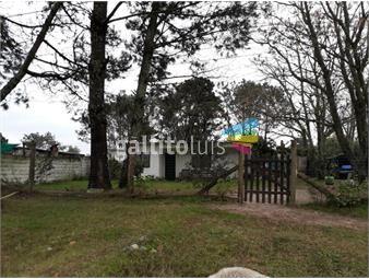 https://www.gallito.com.uy/casa-con-amplio-terreno-inmuebles-15587913