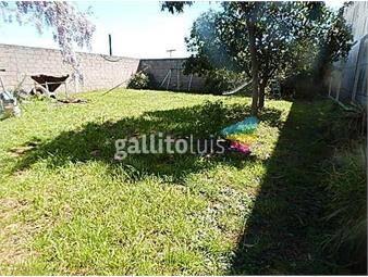 https://www.gallito.com.uy/casa-con-galpon-industrial-tipo-carpiteria-inmuebles-15591841