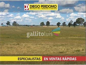 https://www.gallito.com.uy/campo-en-venta-416-ha-inmuebles-15620508