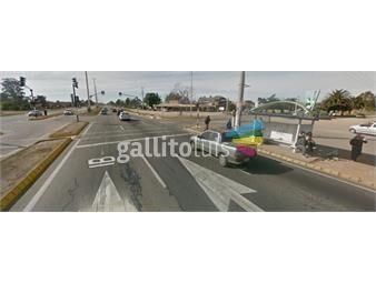 https://www.gallito.com.uy/suc-pinamar-inmuebles-15661673