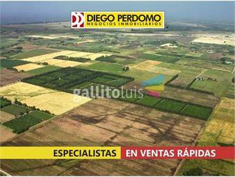 https://www.gallito.com.uy/chacra-en-venta-45-has-libertad-inmuebles-15925793