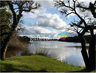 https://www.gallito.com.uy/campo-con-costa-del-rio-de-la-plata-ref260-inmuebles-15978530