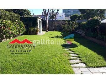 https://www.gallito.com.uy/planta-baja-hermoso-fondo-verde-inmuebles-15354282