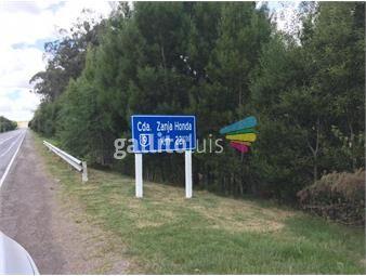 https://www.gallito.com.uy/precioso-campo-proxa-rocha-ruta-9-al-sur-a-30km-de-la-pedr-inmuebles-16158909