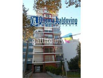 https://www.gallito.com.uy/baldovino-apartamentos-gabriel-pereira-y-charrua-inmuebles-16160737