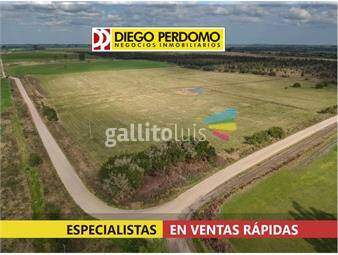 https://www.gallito.com.uy/campo-23-9-has-en-venta-san-jose-inmuebles-16216141