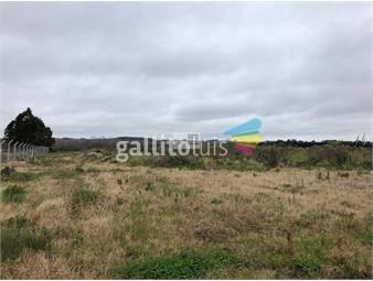 https://www.gallito.com.uy/terreno-en-venta-en-montevideo-rural-inmuebles-16248435