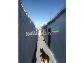 https://www.gallito.com.uy/arteaga-hill-alquila-casa-ph-al-fondo-con-2-dormitorios-inmuebles-16255401