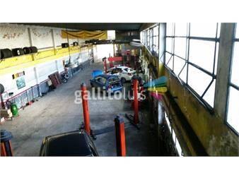 https://www.gallito.com.uy/lo-mejor-de-av-italia-taller-empresa-zona-de-outlets-inmuebles-13019024