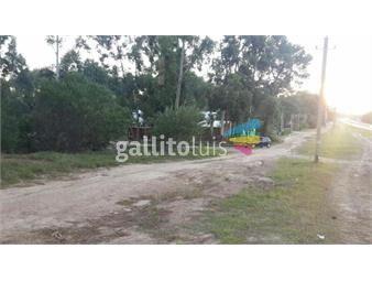 https://www.gallito.com.uy/excelentes-terrenos-sobre-la-interbalnearia-inmuebles-16426291