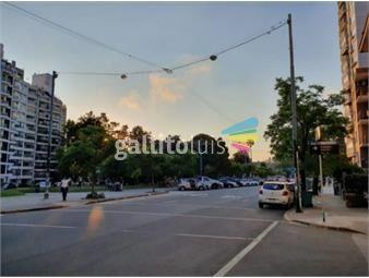 https://www.gallito.com.uy/hermoso-apartamento-sobre-avenida-brasil-con-gran-locomocion-inmuebles-16548454