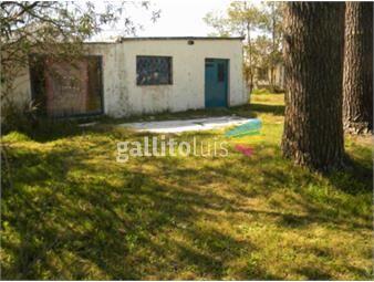 https://www.gallito.com.uy/sobre-av-bus-en-puerta-2-dormitorios-alquiler-solymar-inmuebles-16569854