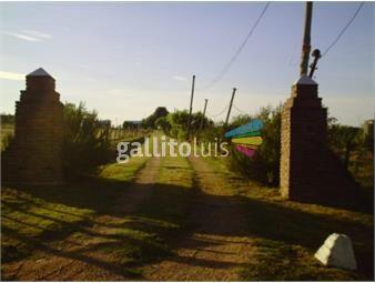 https://www.gallito.com.uy/chacra-en-melilla-con-2-casas-inmuebles-16590751