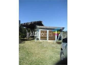https://www.gallito.com.uy/loft-equipada-inmuebles-18349797