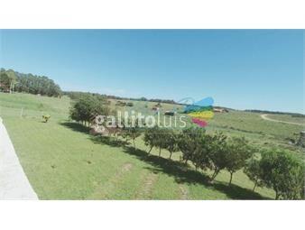https://www.gallito.com.uy/casa-en-la-bota-3-dormitorios-inmuebles-16395645