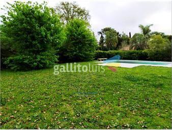 https://www.gallito.com.uy/irazabal-propiedades-venta-en-carrasco-sur-inmuebles-16425909