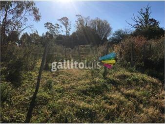 https://www.gallito.com.uy/campo-27-hectareas-en-casupa-inmuebles-17830050