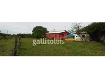 https://www.gallito.com.uy/1-hectarea-con-casa-apartamento-y-galpon-inmuebles-16796767